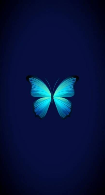 Butterfly Android Wallpaper 3