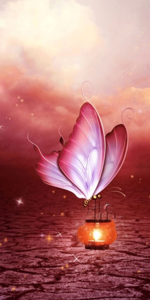 Butterfly Android Wallpaper 7