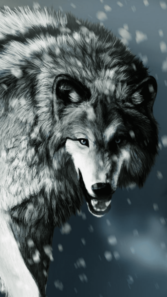 Wolf iPhone Wallpaper Download